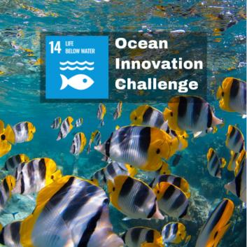 UNDP launches new Ocean Innovation Challenge